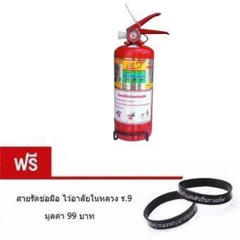 iBettalet ถังดับเพลิง 2 Lbs Dry Chemical Fire Extinguisher (Red) แถมฟรี สายรัดข้อมือ ไว้อาลัยในหลวง ร.9 มูลค่า 99 บาท