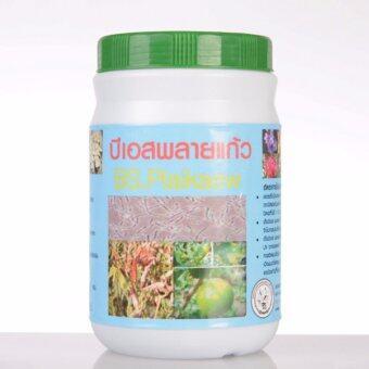 จุลินทรีย์ บีเอสพลายแก้ว กำจัดโรคพืชที่เกิดจากเชื้อรา ขนาด 500 กรัม