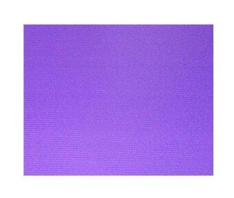 รีวิวพันทิป MP แผ่นพลาสติกลูกฟูก(ฟิวเจอร์บอร์ดPP Board) สีม่วง 3x65x81 แพ็ค 10แผ่น