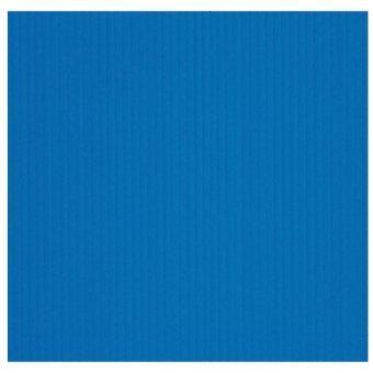PGแผ่นพลาสติกลูกฟูก(ฟิวเจอร์บอร์ดPP Board)น้ำเงิน2x65x49แพ็ค50แผ่น