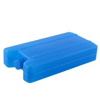 SF Blue Ice Box Freezer Packs Drink Bag Pet New