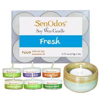 SenOdos Emotional Scented Soy Candles Aroma Fresh (สดชื่น) แพ็ค 6 ชิ้น+ เชิงเทียน ที่วางเทียนทีไลท์ ศิลาดล (เซลาดล) สีเขียวหยกขอบทอง