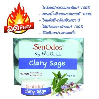SenOdos ลดพิเศษ เทียนหอมอโรม่า ทีไลท์ Tealight Set Clary Sage Soy Candles กลิ่นแครี่เซจ ขนาดพกพา 15 g. (6 ชิ้น)