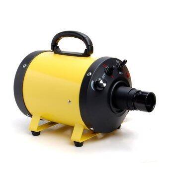 ไดร์เป่าขนสุนัข ไดร์ไล่น้ำ เครื่องเป่าขนสุนัข พลัง turbo (สีเหลือง)