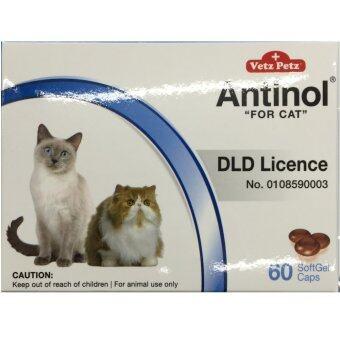 Vetz Petz Antinol for CATS อาหารเสริม บำรุงข้อ สำหรับ แมว จำนวน 60softgelcaps