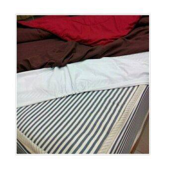 PARA CARE/ผ้ายางคลุมถนอมที่นอนกันน้ำ 6ฟุต1ชิ้น (image 1)