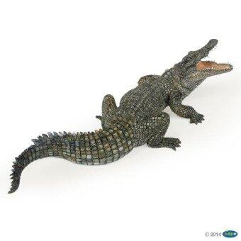 Papo โมเดลจระเข้ Nile Crocodile