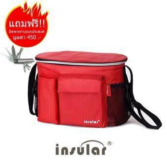 กระเป๋าเก็บอุณหภูมิ DN101