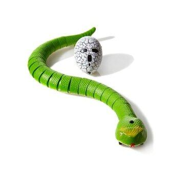 Babybear งูหุ่นยนต์บังคับวิทยุ Snake Innovation - สีเขียว