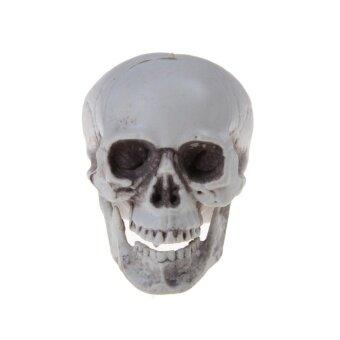 Mini Human Skull Decor Prop Skeleton Plastic Head HalloweenCoffeeBar Ornament - intl