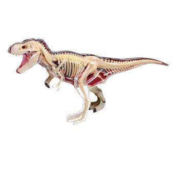 4D Vision หุ่นจำลองไดโนเสาร์ T-Rex 4 มิติ