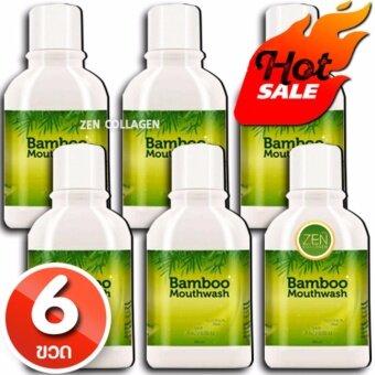 Bamboo Mouthwash น้ำยาบ้วนปาก แบมบูเม้าท์วอช ดูแลฟันขาว ขจัดคราบหินปูน หมดปัญหากลิ่นปาก เซ็ต 6 ขวด (1 ขวด / 300 มิลลิลิตร)