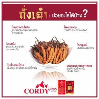 Cordy Plus (คอร์ดี้ พลัส) 2 กระปุก - 3