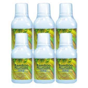 Hylife Bamboo Mouthwash Plus น้ำยาบ้วนปากแบมบู เม้าท์วอช พลัส สูตรใหม่ ทำลายแบคทีเรียได้ดีกว่าเดิม ปากหอมสะอาด ขนาด 300 มล. (6 ขวด)