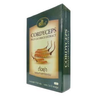 ถั่งเช่า ไฟโตโกลด์ Phytogold Cordyceps 30 Capsule X 1 Box