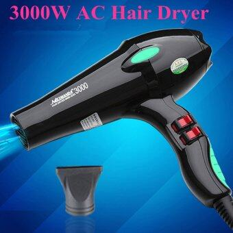 Harga 3000W Anion Hair Dryer Blow Dryer Household Professional Barbershop Use Hairdryer Hair Styling Tools - intl