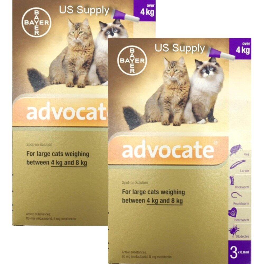 Advocate แมว 4-8 กก. (2 กล่อง) (EXP: 04/2020 ) +ส่งฟรี KERRY+ ยาหยดกำจัดหมัด ไรหู ไรขี้เรื้อน กันพยาธิหัวใจ พยาธิตัวกลม