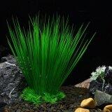 ต้นไม้ประดิษฐ์หญ้า Figurines Miniatures Aquarium ภูมิทัศน์ตู้ปลา, ขนาด: 22.0X16.0 เซนติเมตร - INTL