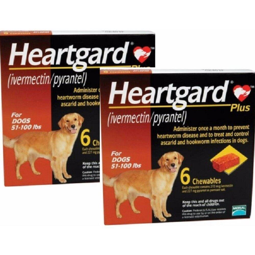 สุดยอดสินค้า!! Heartgard Plus สุนัข 23-45 กก. (2 กล่อง) [EXP: 03/2021]   กินป้องกันพยาธิหนอนหัวใจ และถ่ายพยาธิภายใน + ส่งฟรี KERRY+