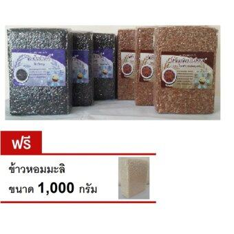 Thai rice Rice Berry (Brown rice) ข้าวไท ข้าวกล้องไรซ์เบอร์รี่ + Sang Yod Phatthalung Rice (Brown rice) ข้าวไท ข้าวกล้องพัทลุงข้าวสังข์หยด