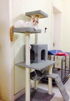 คอนโดแมวcatcondoบ้านแมว ที่นอนแมว รุ่นBest Seller (สีเทา)
