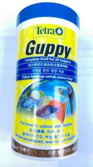 Tetra Guppy อาหารชนิดแผ่น สำหรับปลาขนาดเล็ก 75g