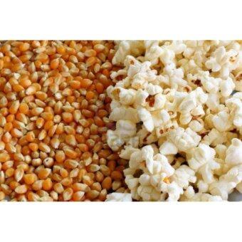 ข้าวโพดคั่ว ป๊อปคอร์น Popcorn - อเมริกัน ป๊อปคอร์นบัตเตอร์ฟลาย(สินค้าจากอเมริกา) ตราแม็กกาแรต อร่อยเพลิดเพลินได้ทุกเวลากับเมล็ดข้าวโพดดิบที่เอาไปทำป๊อปคอร์นได้ง่ายแสนง่าย ใส่ชามปิดฝาเข้าไมโครเวฟ หรือใช้เตาความร้อน (image 2)