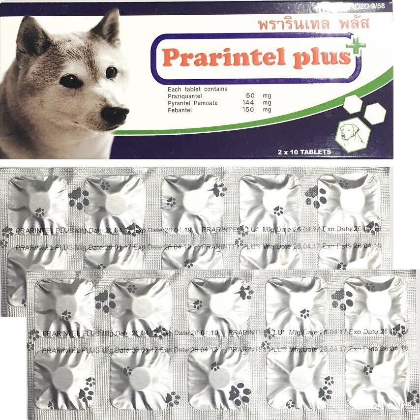 เก็บเงินปลายทางได้ Prarintel Plus Dog ( 20 เม็ด)  ยาถ่ายพยาธิสุนัข ถ่ายพยาธิรวม ตัวกลม พยาธิตัวตืด แซ่ม้า  EXP: 03/2021 +ส่ง KERRY+