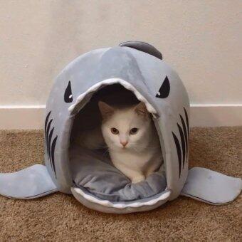 ที่นอนแมว บ้านแมว รูปทรงปลาฉลาม