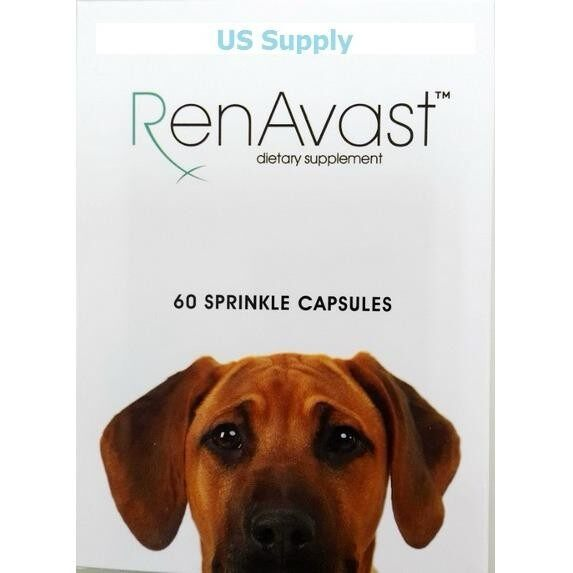 ขายดีมาก! Renavast DOG (60 แคปซูล) บำรุงไตสุนัข สุนัขไตเสื่อม ค่าไตขึ้น บำรุงระดับเซลล์ ( Exp 05/2021) +ส่งฟรี KERRY+