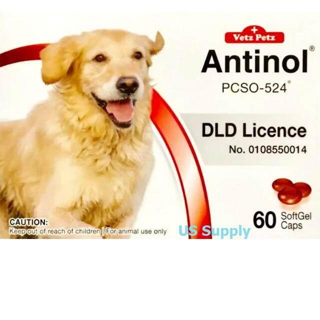 ลดสุดๆ Antinol DOG (60 SoftGels) อาหารเสริมบำรุงข้อสุนัข ลดปวดข้อ ลดข้ออักเสบ (EXP:08/2021) ++ส่งฟรี KERRY++