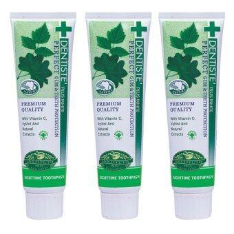 Dentiste' Plus White Toothpaste ยาสีฟัน เดนทิสเต้ 160 g. (แพ็ค3 หลอด)