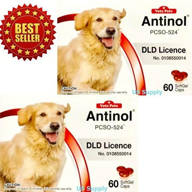 ลดสุดๆ [ 2 กล่อง ] Antinol DOG (60 SoftGels) อาหารเสริมบำรุงข้อสุนัข ลดปวดข้อ ลดข้ออักเสบ (EXP: 08/2021) ++ส่งฟรี KERRY++