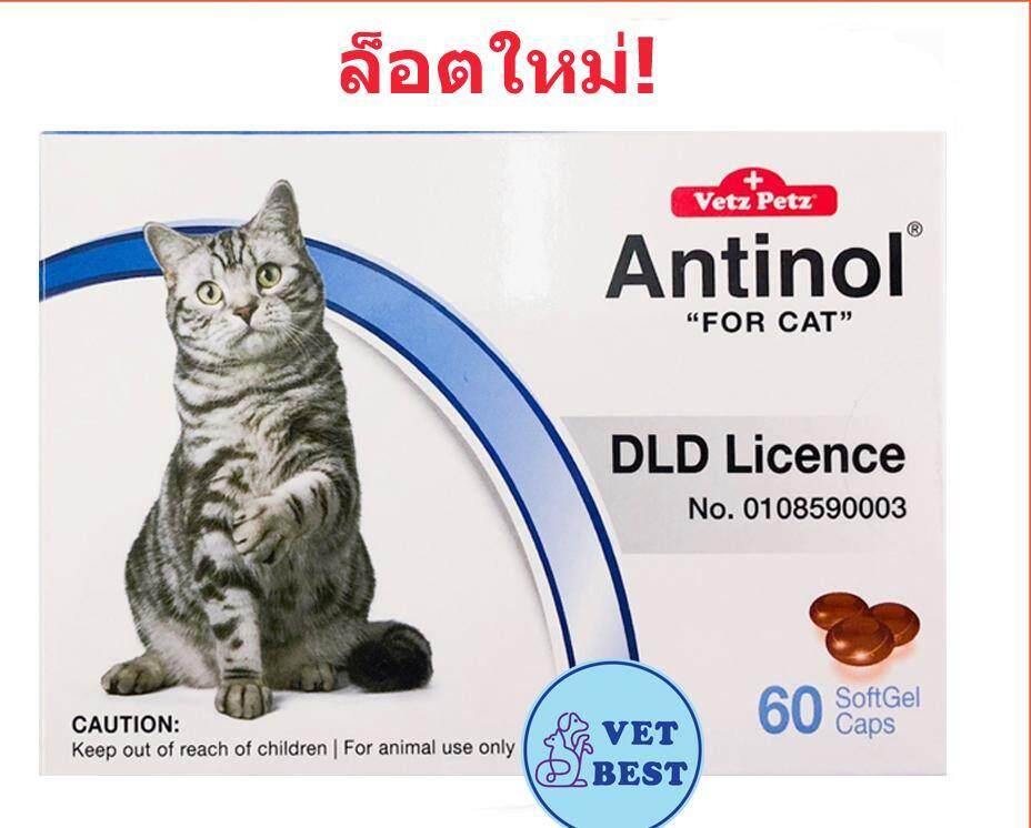 ลดสุดๆ Antinol CAT (60 เม็ด) +ส่ง KERRY+ แอนทินอลแมว บำรุงข้อต่อแมว ข้อกระดูก ลดปวดข้ออักเสบ (หมดอายุ:06/2021)