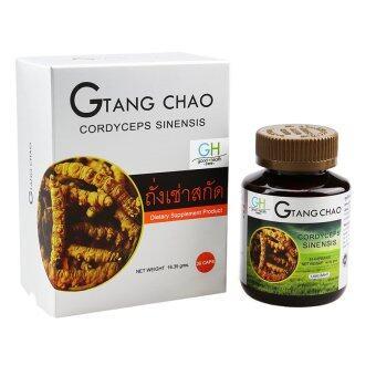 G-Tangchao ถั่งเช่าทิเบต บรรจุ 30 แคปซูล