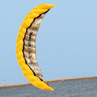 High Quality 2.5m Yellow Dual Line Parafoil Kite WithFlying Tools Power Braid Sailing Kitesurf Rainbow Sports Beach