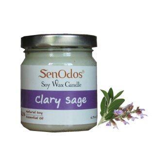 SenOdos เทียนหอม อโรม่า Clary Sage Scented Soy Candle Aroma 190 g. (กลิ่นแครี่เซจแท้)